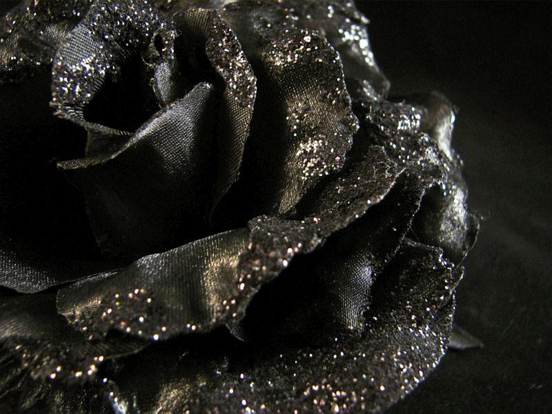 Zwarte roos met glitter