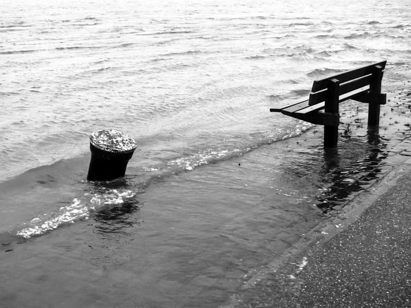 Bankje in het water