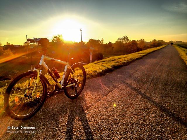 Mijn fiets op de dijk