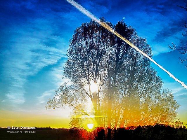 Foto bewerkt met DXP