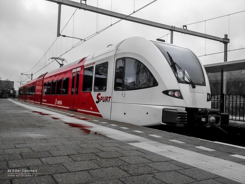 Trein in Gorinchem