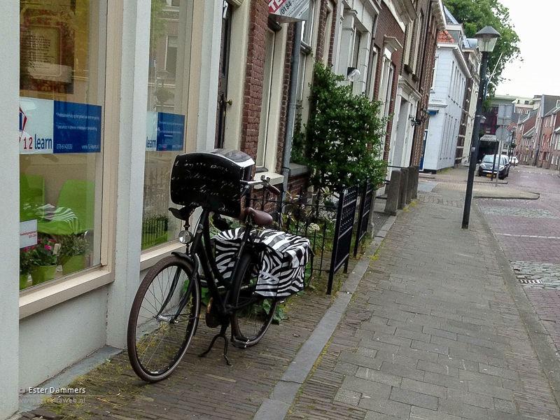 Volgeladen fiets