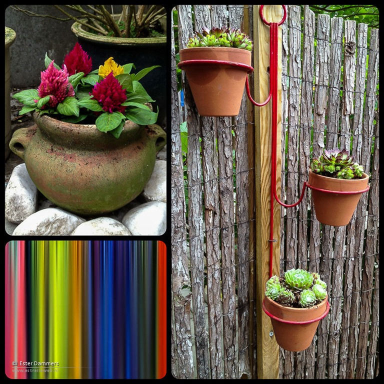 Planten collage
