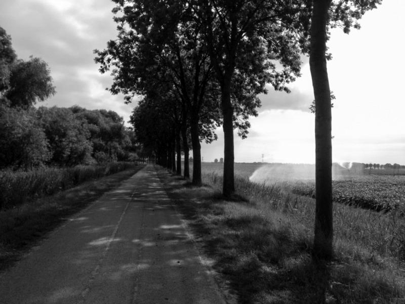 Tijdens het fietsen