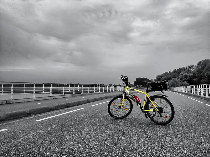 Mijn fiets bij de Noordwaard, Biesbosch