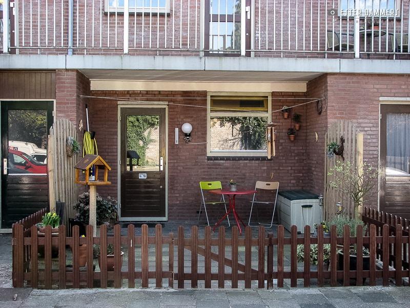 Mijn achtertuin (9-4-2007)