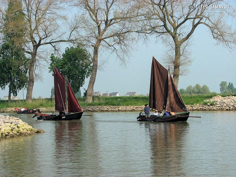 Zalmschouwen bij Woudrichem (28-4-2007)