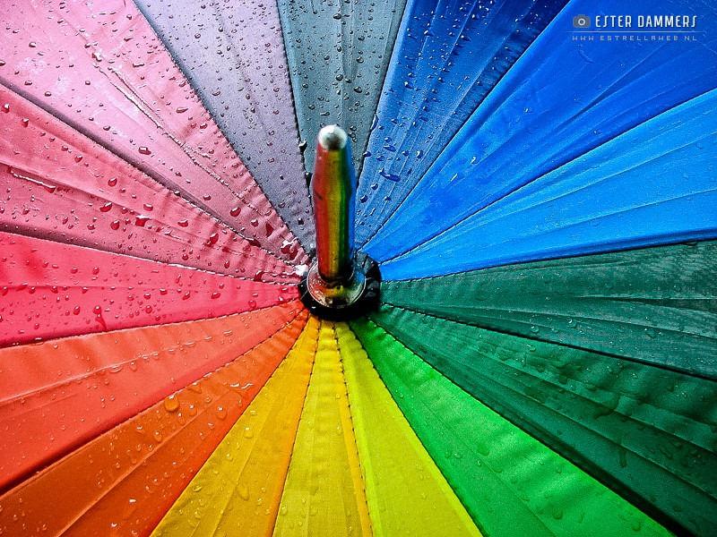 Paraplu (20-7-2007)