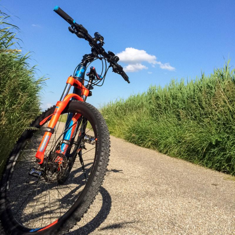 Mijn fiets tussen het hoge gras