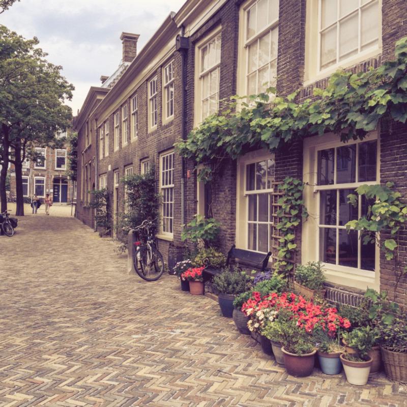 Gezellig tuintje in Dordrecht