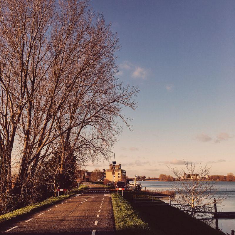 Maasdijk in Andel