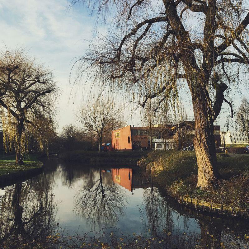 Haarhorst