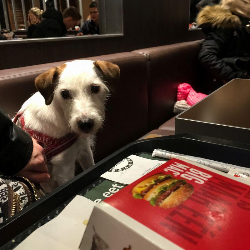 Big Mac Bas :-)