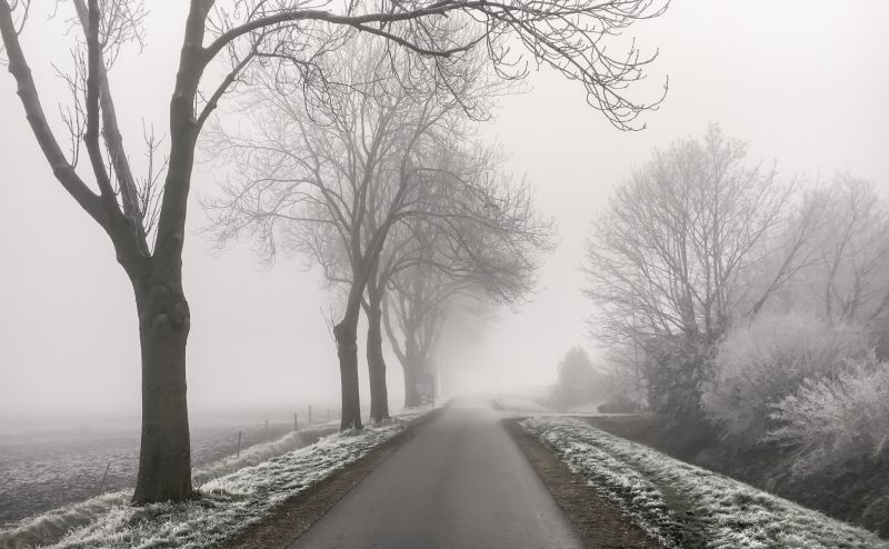 Mist in Oudendijk