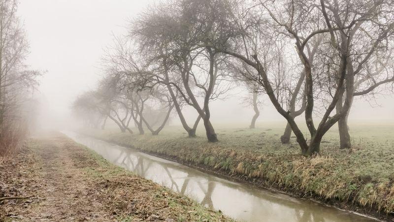 Mist in de polder