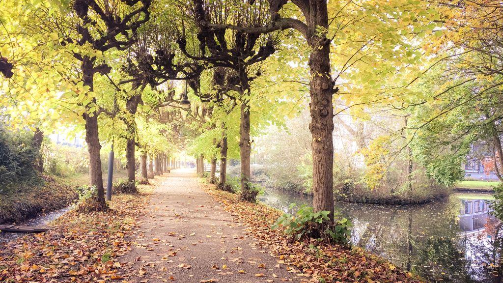 Het Lindelaantje, Gorinchem