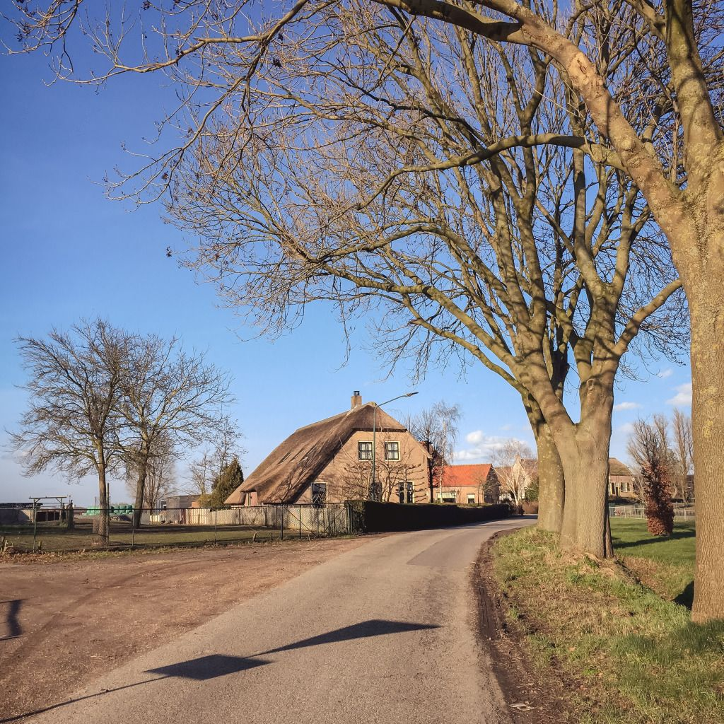 Mooie boerderij bij Waardhuizen