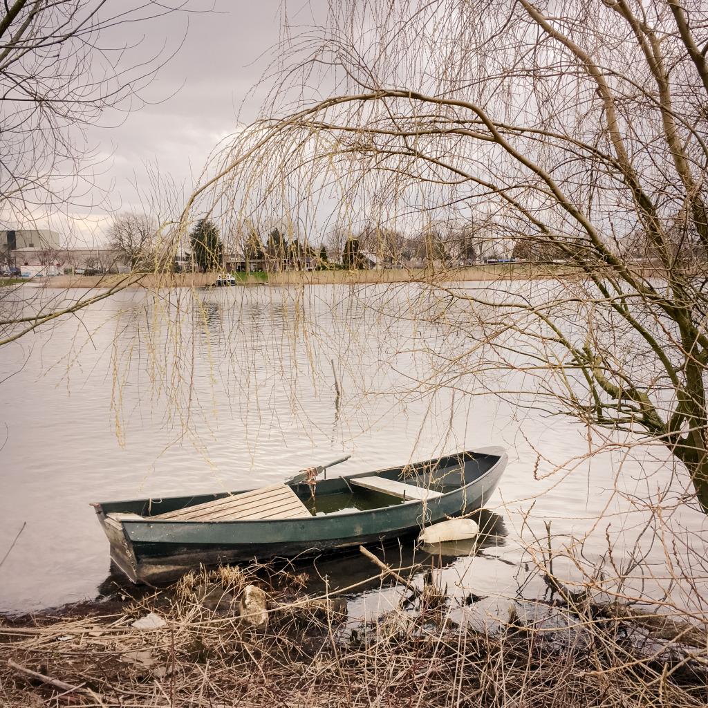 Roeieibootje aan de Maas