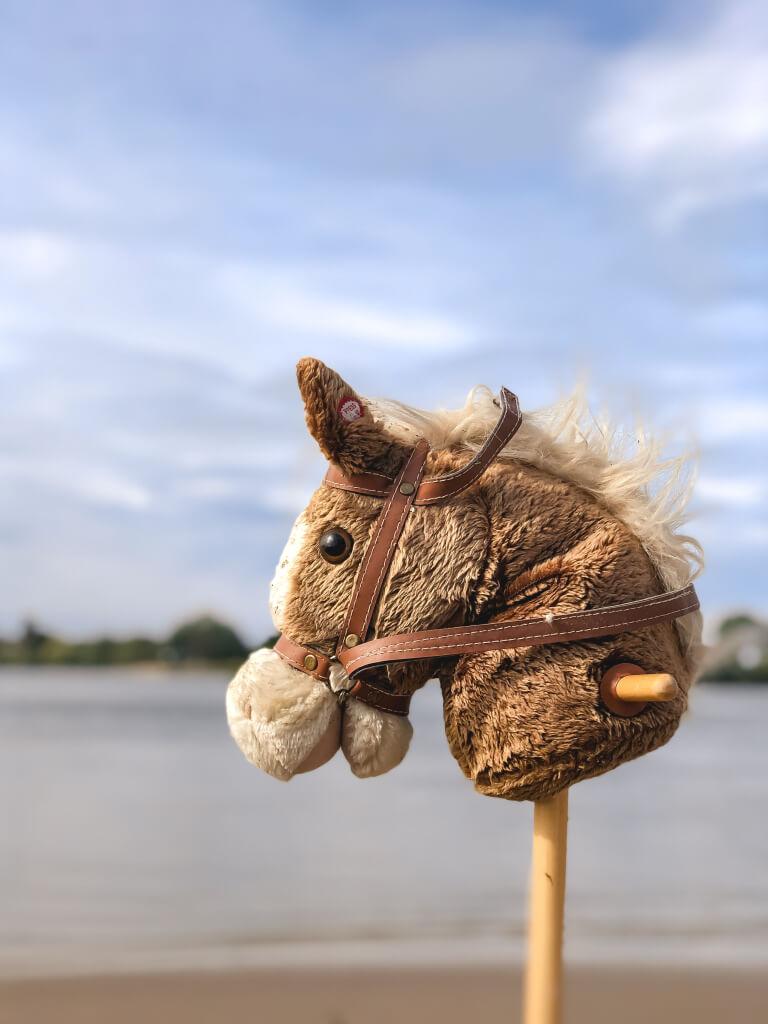 Paardje op een stok