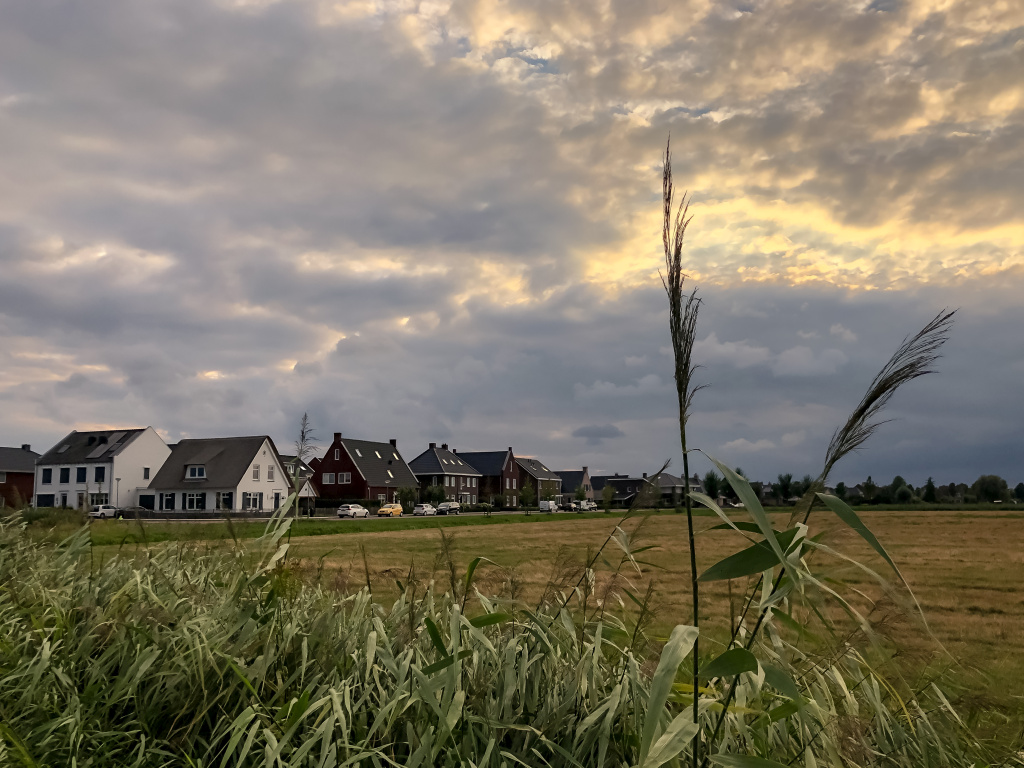 Vijcie, Werkendam