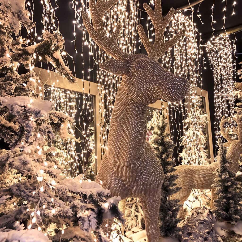 Kerstdecoratie Intratuin Sliedrecht