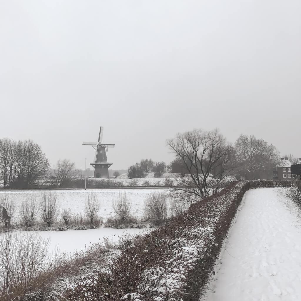 Sneeuw en molen de Hoop
