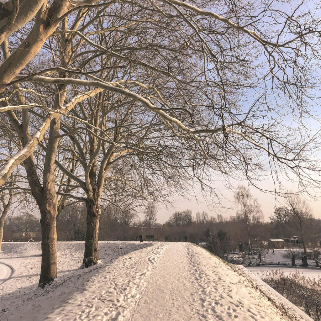 Winterwandeling op de wal