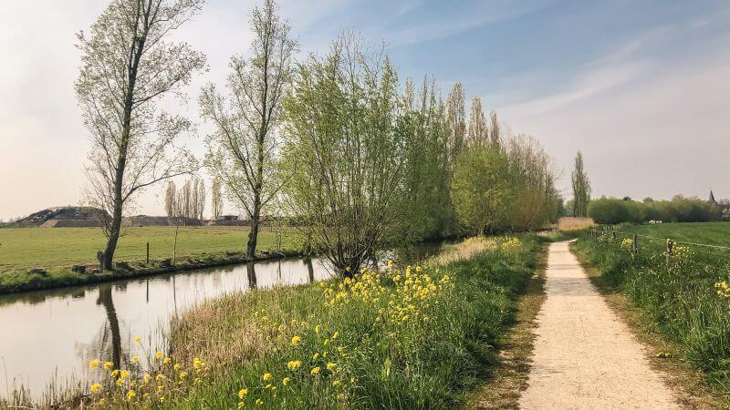 Fietsen langs voorjaarsbloemen