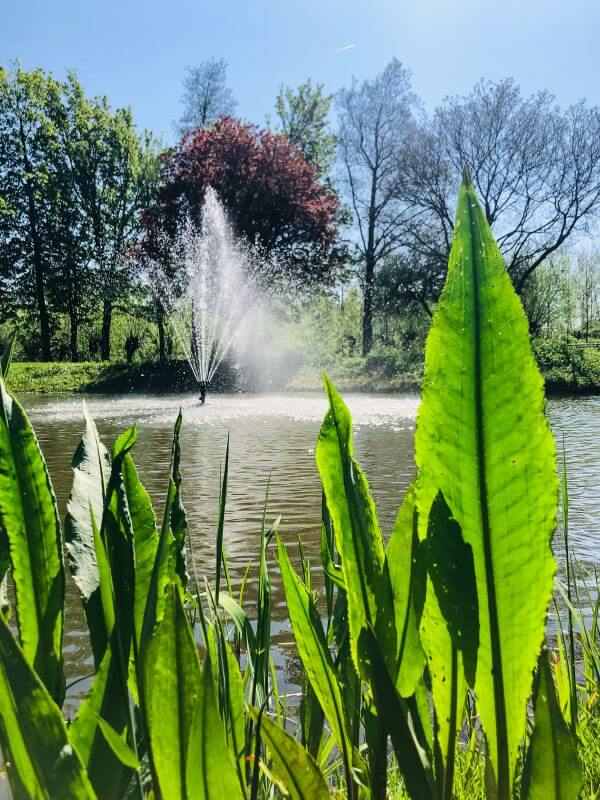 Fontein in Gorinchem