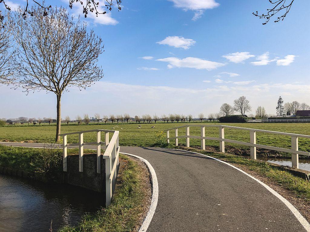 Leuk fietspad in de polder