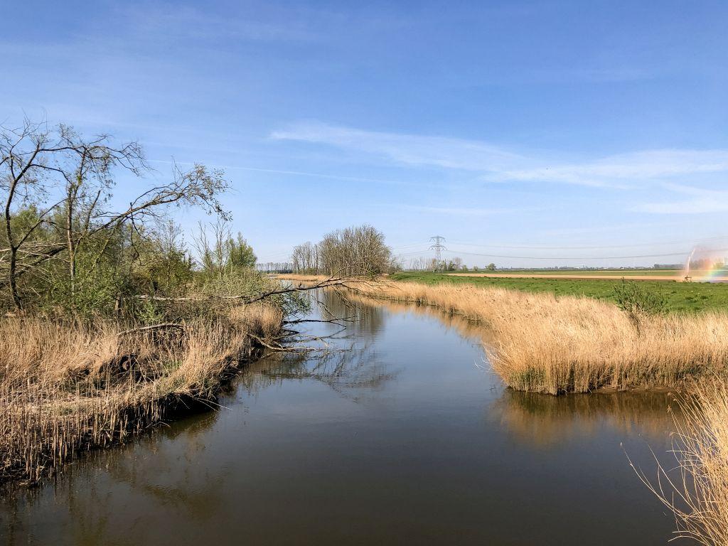 Mooi in de Biesbosch