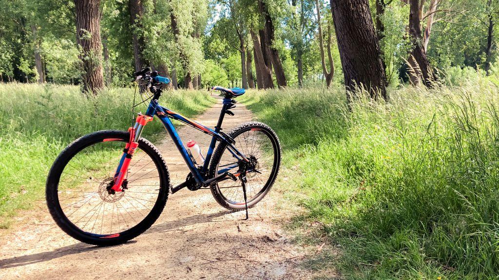 Mijn fiets in het Almbos