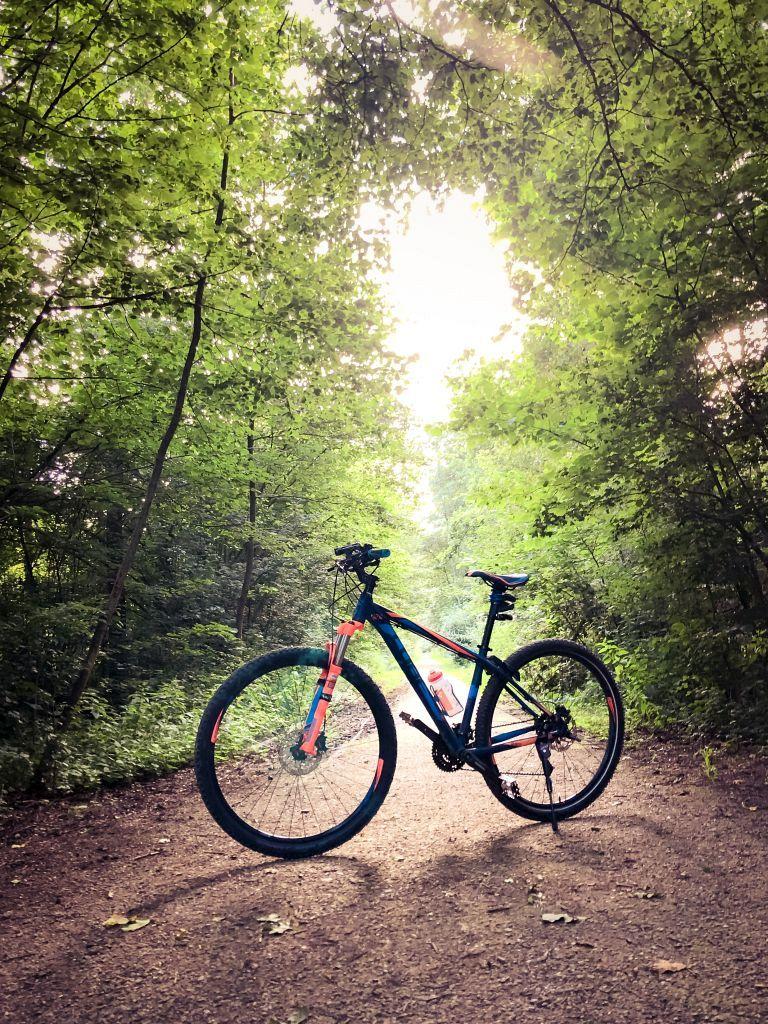 Mijn fiets in het bos