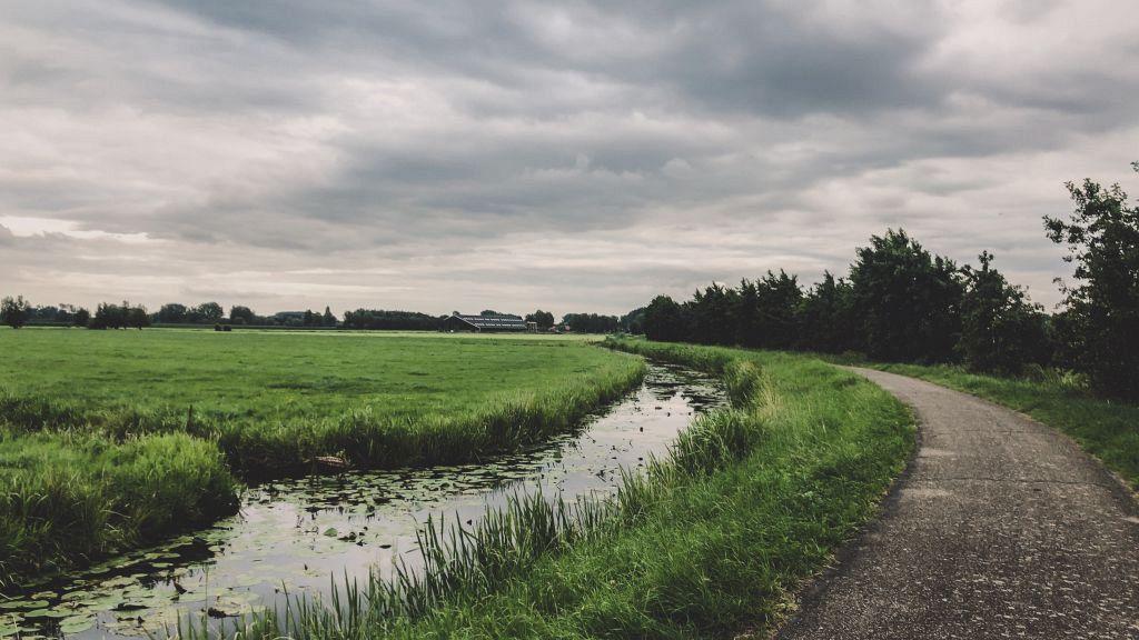 Bewolkte polder