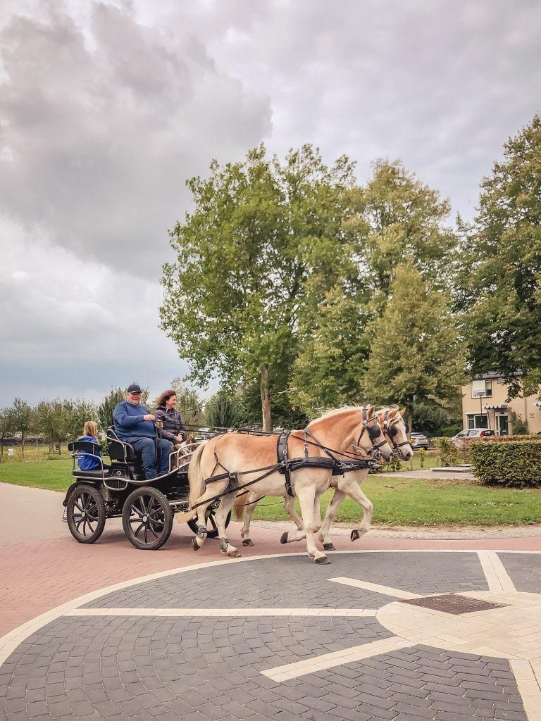 Paard en wagen in Woudrichem