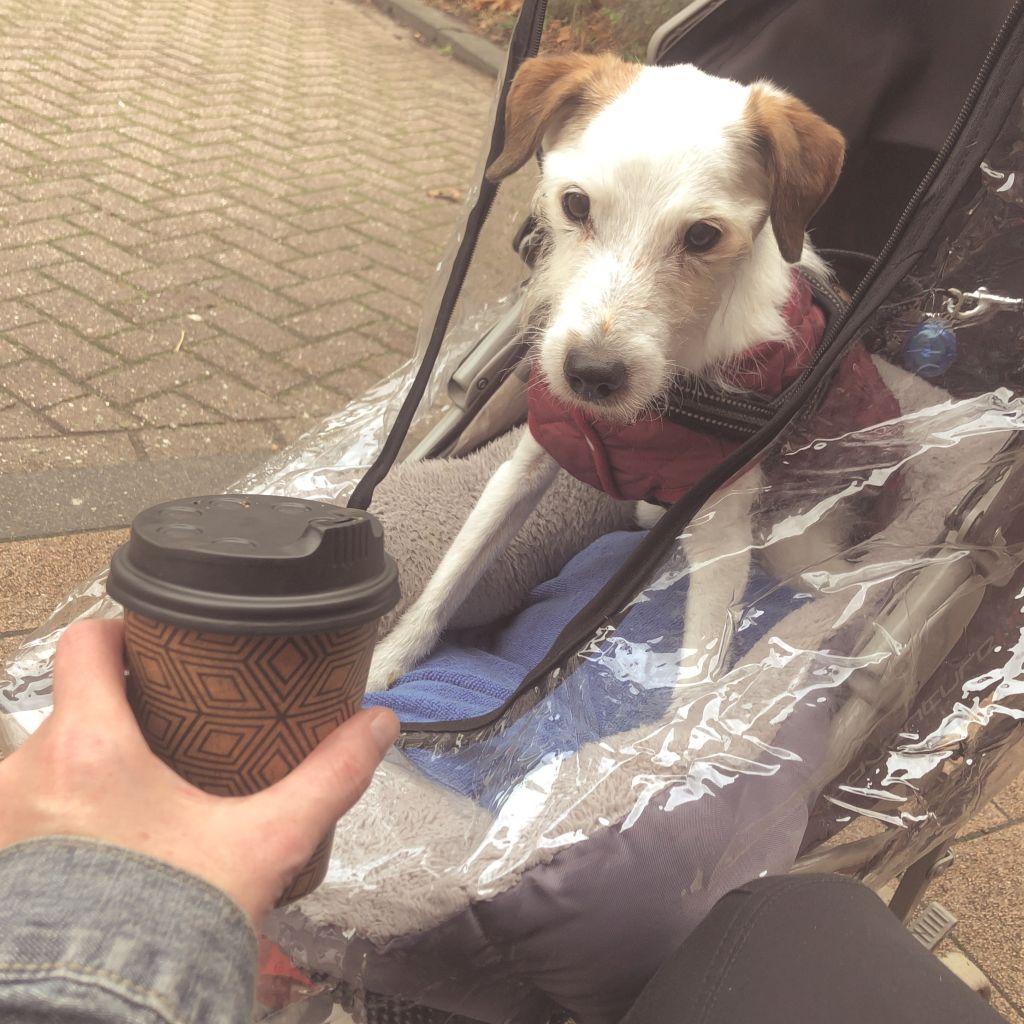 Bas en koffie