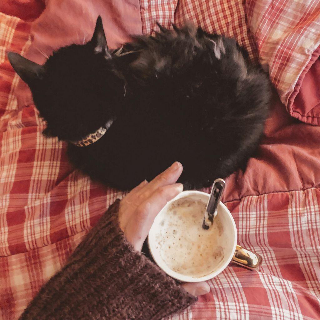 Koffie met de kat