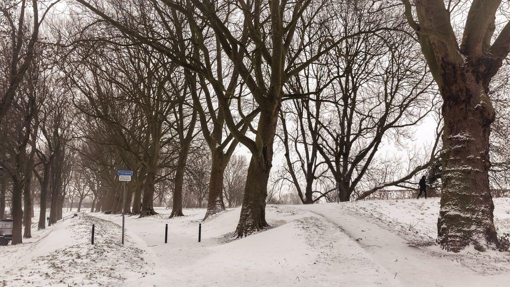 Dalemwal in de sneeuw