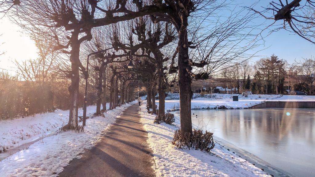 Lindelaantje in de winter