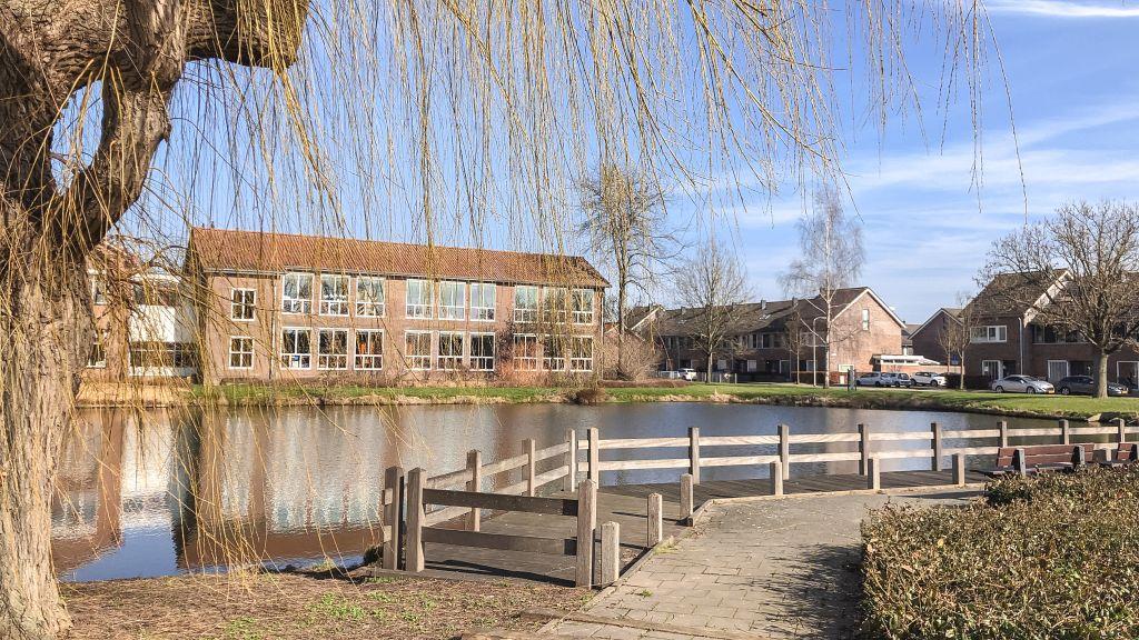 Wandelen in de Haarwijk