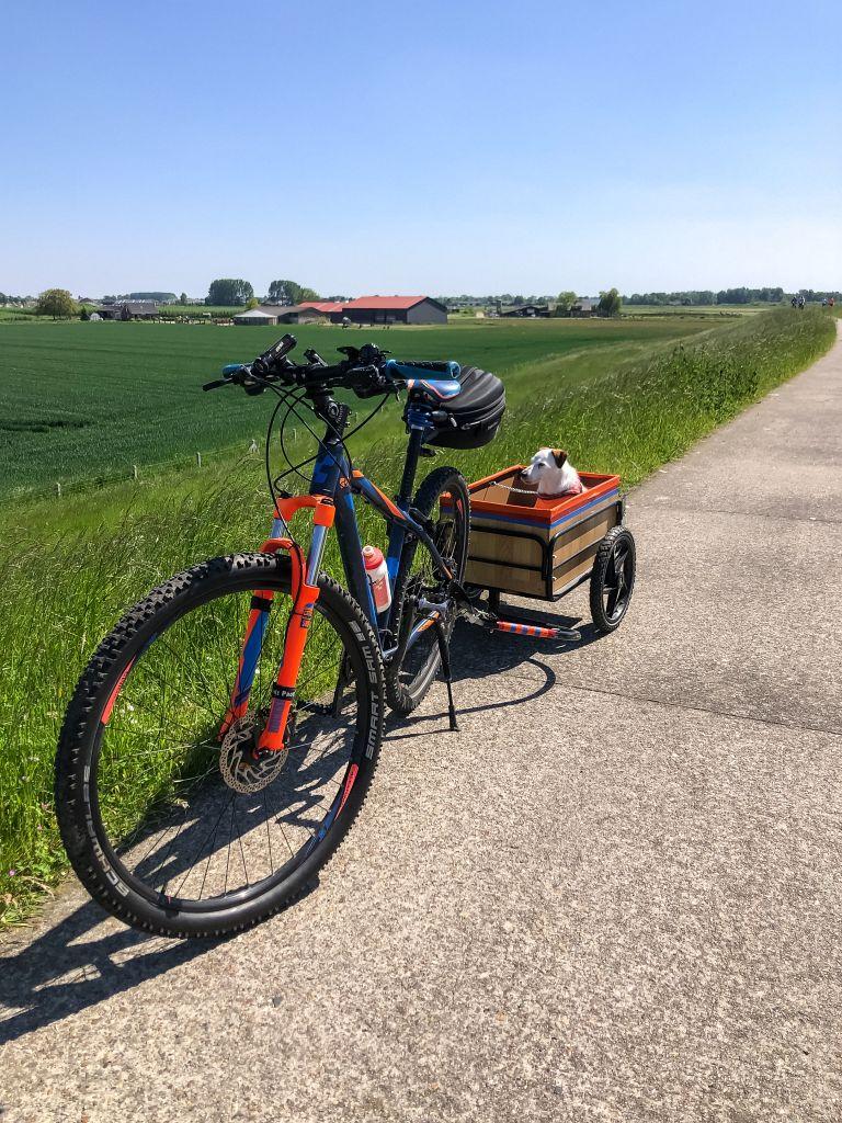 Bas in de fietskar