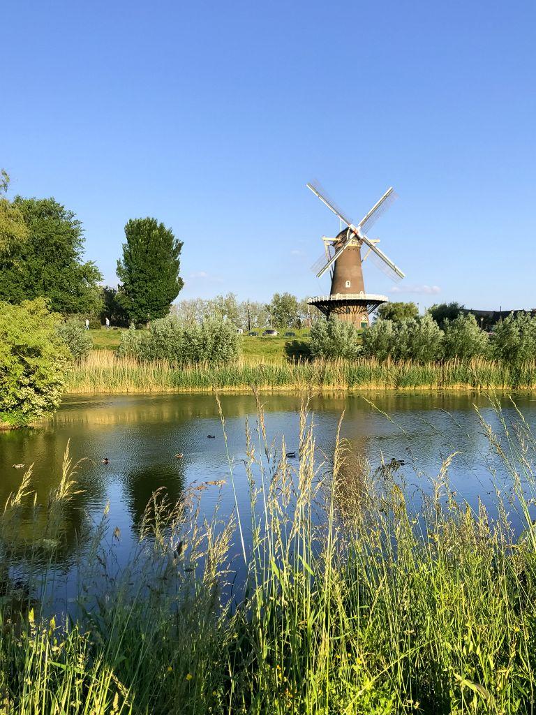 Paardenwater en de molen