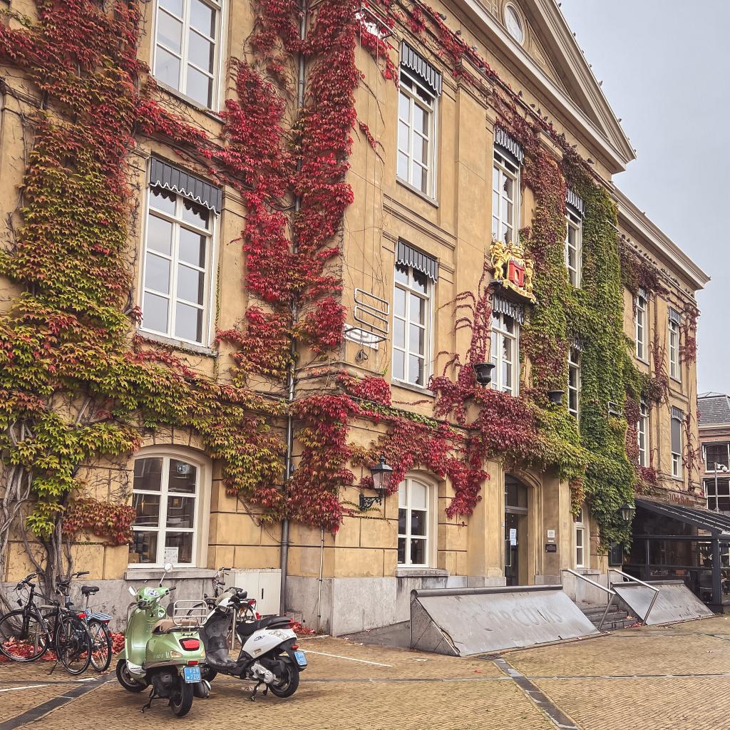 Stadhuis in herfstkleed